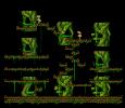 Monkey Forest I