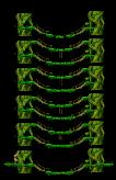 The Tree That Grew II