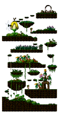 Swampy Land in a Deep Forest
