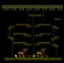 Monkey Swamp II