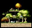 Tiru's Forest